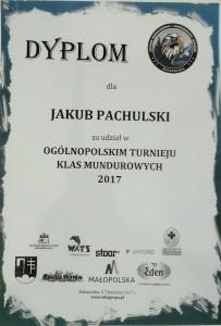 IMG_20170416_120328 dyplom 2